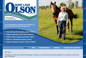 Mary Lane Olson website